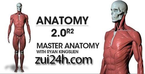 ZBrushWorkshops: Anatomy 2.0 R2 – Master Anatomy with Ryan Kingslien ...